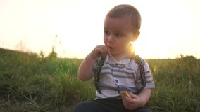 Mała chłopiec siedzi na trawie i je ciastka w pogodnym letnim dniu w zwolnionym tempie zbiory