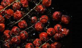 Mała czerwień piec pomidory zdjęcie stock
