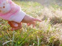 Mała dziecko ręka z poparciem od matki, pierwszy raz, dosięga za dotykać rosa krople na trawach zdjęcia stock