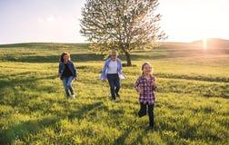 Mała dziewczyna z jej starszymi dziadkami bawić się outside w naturze Zdjęcie Stock