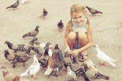 Mała dziewczynka żywieniowi gołębie w parku Fotografia Royalty Free
