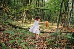 Mała dziewczynka bawić się z jej niedźwiedziem w lesie zdjęcia royalty free
