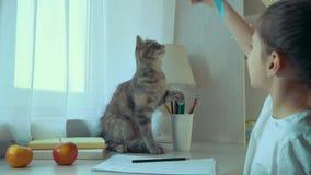 Mała dziewczynka bawić się z jej zwierzę domowe kotem z faborkiem zdjęcie wideo