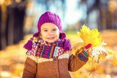 Mała dziewczynka bawić się z jesień liść Zdjęcie Stock