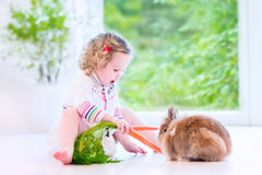 Mała dziewczynka bawić się z królikiem Zdjęcia Royalty Free