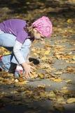 Mała dziewczynka bawić się z liśćmi Obrazy Royalty Free