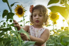 Mała dziewczynka bawić się z słonecznikami Zdjęcia Royalty Free