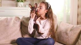 Mała dziewczynka bawić się z Zabawkarskiego Terrier szczeniakiem zdjęcie wideo