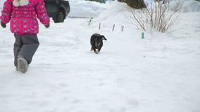 Mała Dziewczynka Biega dla psa w zimie zbiory wideo