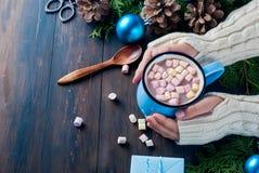 Mała dziewczynka chwytów gorącej czekolady kubka dowcipu marshmallow Zdjęcia Royalty Free