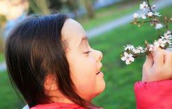 Mała dziewczynka cieszy się z wiosna kwiatami Zdjęcie Royalty Free