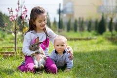 Mała dziewczynka i jej dziecko brat bawić się z białym królikiem w p, zdjęcie royalty free