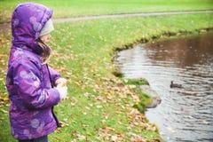 Mała dziewczynka karmi kaczki na jeziora wybrzeżu Fotografia Royalty Free