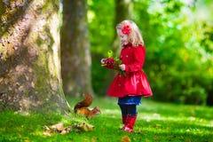 Mała dziewczynka karmi wiewiórki w jesień parku Obraz Royalty Free