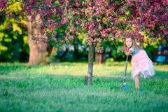 Mała dziewczynka ma zabawę na hulajnoga w kwitnącym jabłoń ogródzie na wiosna dniu Obrazy Royalty Free
