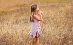 Mała dziewczynka na pszenicznym polu z jej rękami holded zdjęcie royalty free