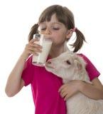 Mała dziewczynka pije zdrowego kózki mleko Zdjęcia Royalty Free