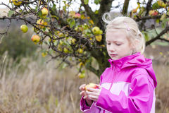 Mała dziewczynka target889_1_ jabłka Obrazy Royalty Free