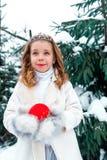Mała dziewczynka z świerczyną na śniegu Obraz Stock