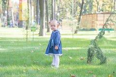 Mała dziewczynka z żółtym liściem Dziecko bawić się z jesień złotymi liśćmi Dzieciak sztuka outdoors w parku Dzieci wycieczkuje w Obraz Royalty Free