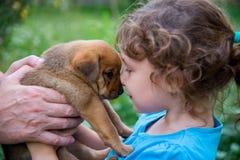 Mała dziewczynka z szczeniakiem w ona ręki Obraz Royalty Free