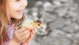 Mała dziewczynka z wiosny kaczątkiem Drób w rękach c zdjęcia royalty free