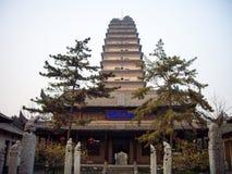 Mała Dzika Gęsia pagoda, Chiny obrazy royalty free