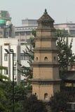 Mała Dzika Gęsia pagoda Xian obraz royalty free