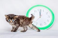 Mała figlarka blisko zegaru Zegar pokazuje północ Ja ` s ti Zdjęcie Stock
