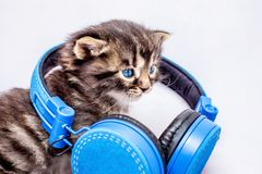 Mała figlarka z hełmofonami DJ podczas dyskoteki Słuchać T zdjęcia stock