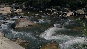 Mała halna rzeka zdjęcie wideo