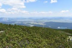 Mała halna sosna, Pinus Mugo na wierzchołku Crvena Greda szczyt i widok od wierzchołka, obrazy stock