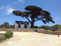 Mała kabina pod Afrykańskim drzewem Obrazy Royalty Free
