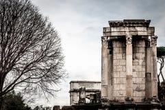 Mała kolumnada dalej z dużym starym drzewem na lewym i białym niebie o zdjęcia royalty free