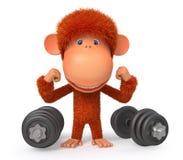 Mała małpia atleta Zdjęcia Stock