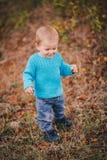 Mała mody chłopiec jest ubranym błękitnego jeanse i pulower w lesie Zdjęcie Royalty Free