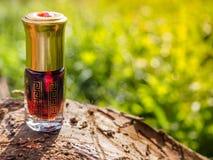 Mała nieotwarta butelka z zawartość na zielonym naturalnym tle Mała butelka agarwood olej przy naturalnym zielonym backgroun Fotografia Stock