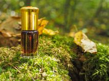 Mała nieotwarta butelka z zawartość na zielonym naturalnym tle Mała butelka agarwood olej przy naturalnym zielonym backgroun Zdjęcie Stock