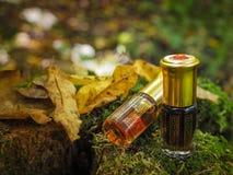 Mała nieotwarta butelka z zawartość na zielonym naturalnym tle Mała butelka agarwood olej przy naturalnym zielonym backgroun Zdjęcie Royalty Free