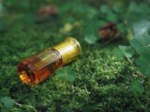 Mała nieotwarta butelka z zawartość na zielonym naturalnym tle Mała butelka agarwood olej przy naturalnym zielonym backgroun Obraz Stock