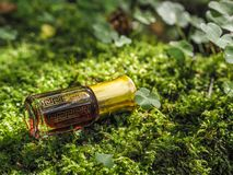 Mała nieotwarta butelka z zawartość na zielonym naturalnym tle Mała butelka agarwood olej przy naturalnym zielonym backgroun Obraz Royalty Free