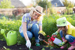 Mała ogrodniczki dziewczyna z macierzystym podlewaniem na gazonie blisko mieści Zdjęcie Stock
