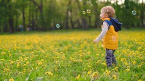 Mała powabna chłopiec bawić się z mydlanymi bąblami w parku na słonecznym dniu zwolnionego tempa wideo zbiory wideo