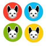 Mała Psia Zwierzęca zwierzę domowe sieci ikony kolekcja Zdjęcie Stock