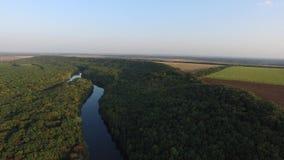 Mała rzeka, jesień las, orał śródpolnego widok z lotu ptaka Jesień krajobraz zdjęcie wideo