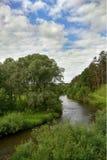 Mała rzeka płynie w małym lesie zdjęcia royalty free
