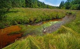 Mała rzeka, park narodowy Sumava Zdjęcia Royalty Free