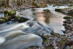Mała rzeka po środku lasu pokojowo płynie w opóźnionej jesieni zdjęcia royalty free