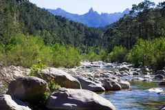 Mała rzeka w skalistych wzgórzach w Col De Bavella górach, Corsica obrazy royalty free