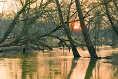 Mała rzeka w wiośnie. Fotografia Stock